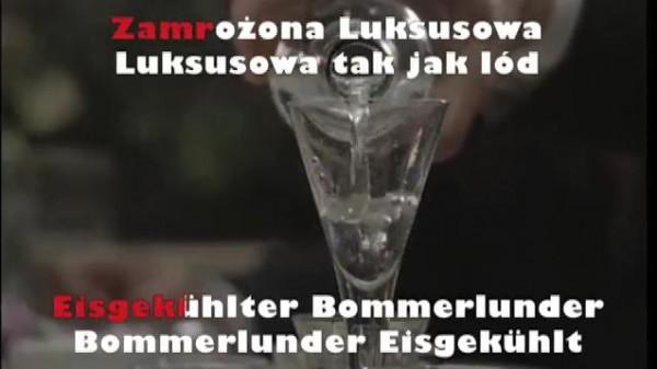 www.dietotenhosen.de