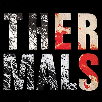 "The Thermals - ""Desperate Ground"" (Saddle Creek / VÖ: 16.04.13)"